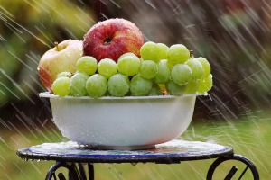 bowl-of-fruit-in-rain-4125348_960_720.jpg
