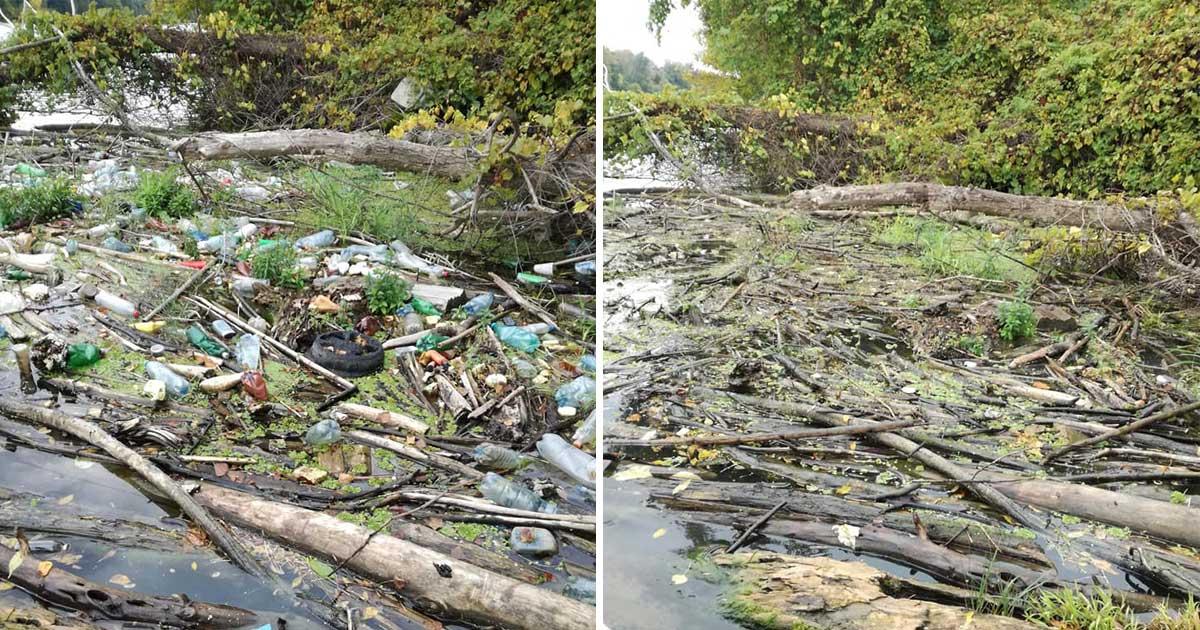A Bence által kitakarított helyszín előtte / utána képe.