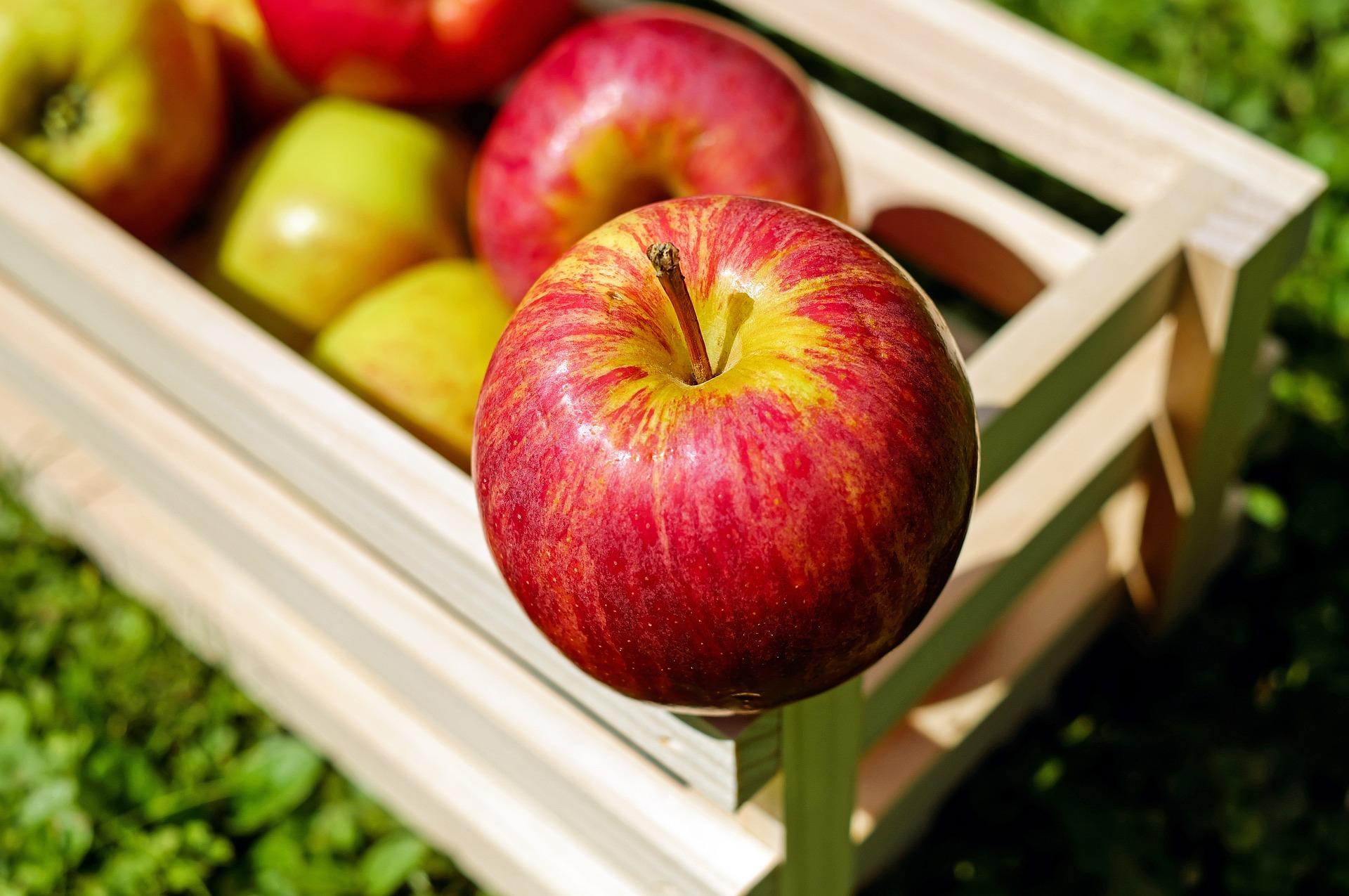 Az alma igenis superfood! Kampány indult, melyben a héjától a magjáig megismertetnek a gyümölccsel