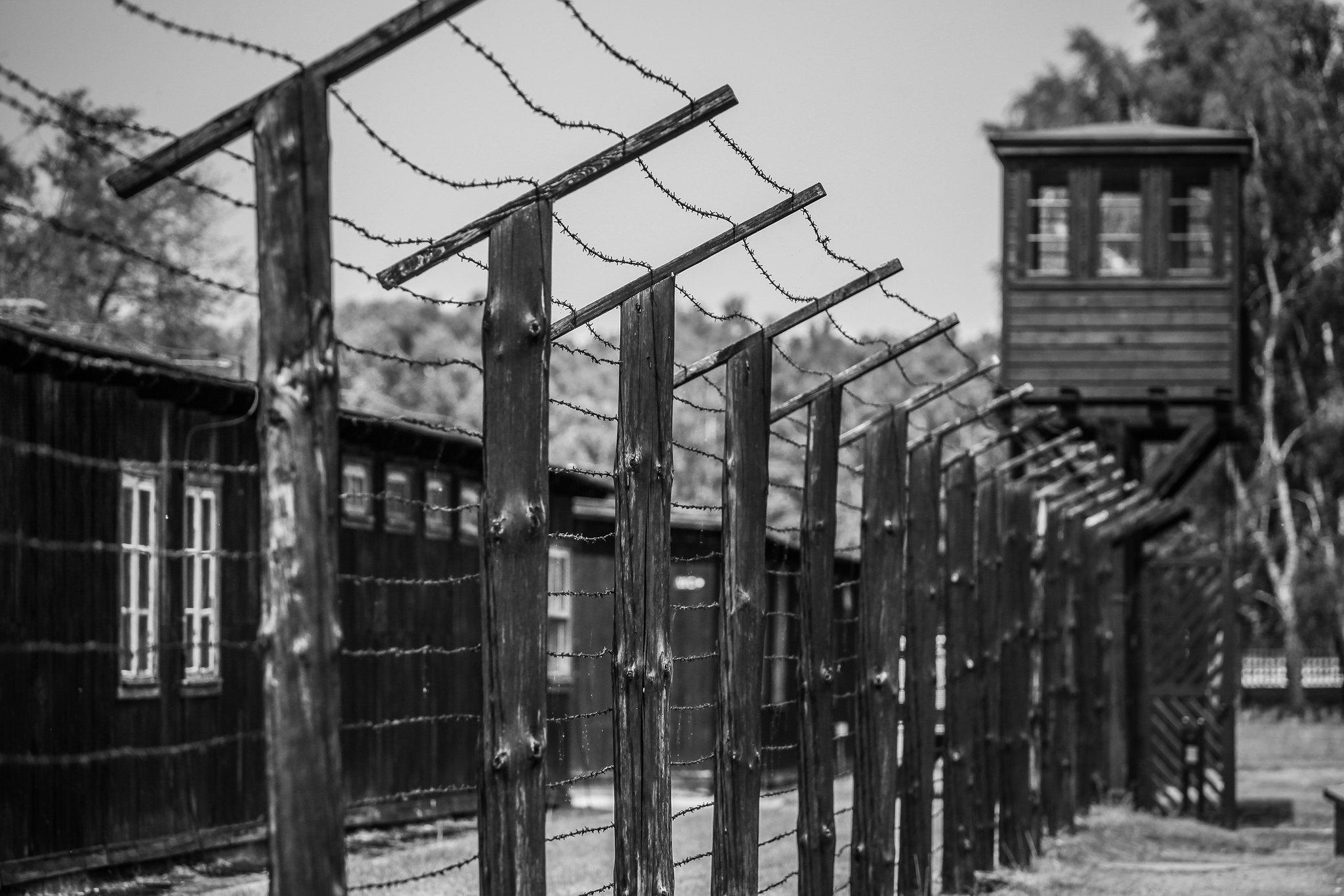 Megtalálták a 96 éves, náci háborús bűnök elkövetésével vádolt nőt, aki a bírósági tárgyalás napján szökött meg